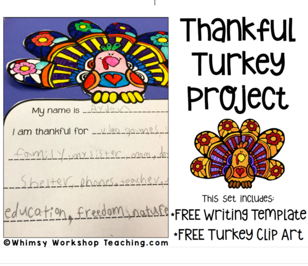 turkey project