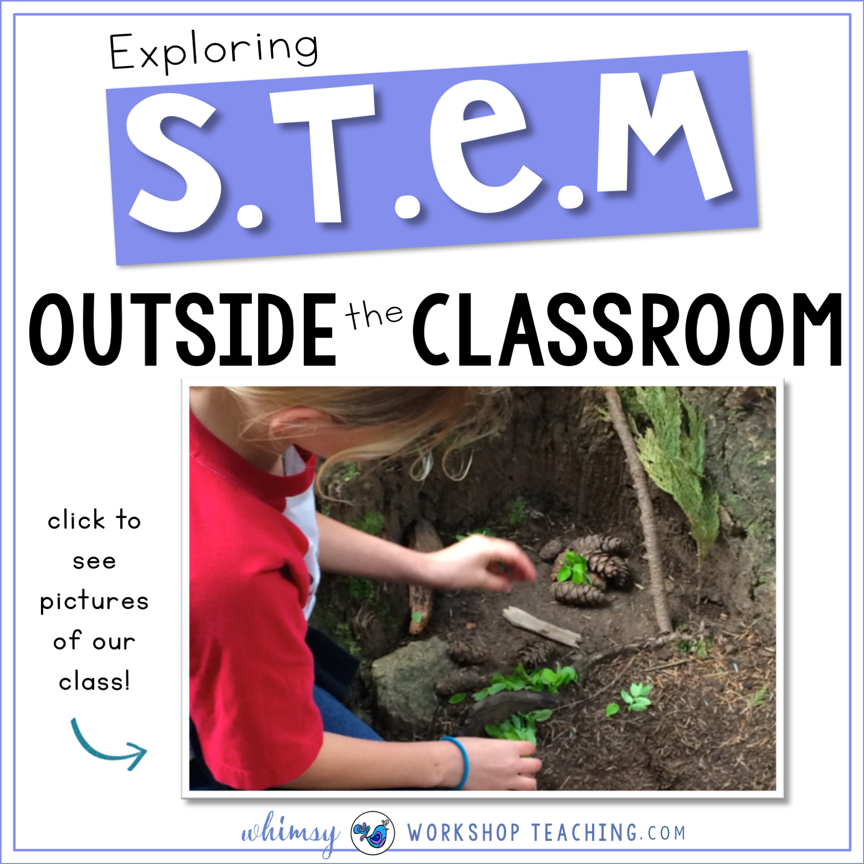 Exploring STEM outside the classroom with pictures from our class
