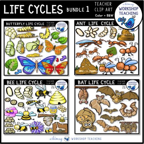 Life Cycles Clip Art Bundle 1