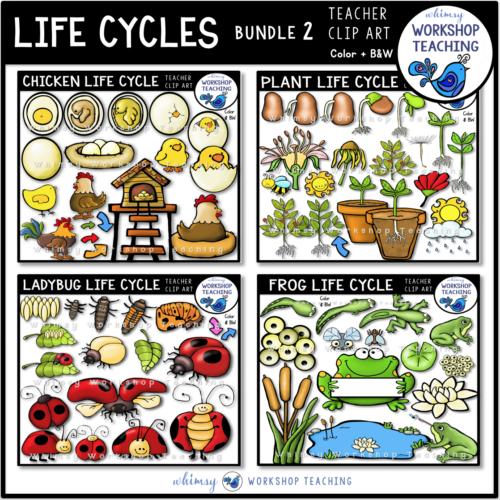 Life Cycles Clip Art Bundle 2