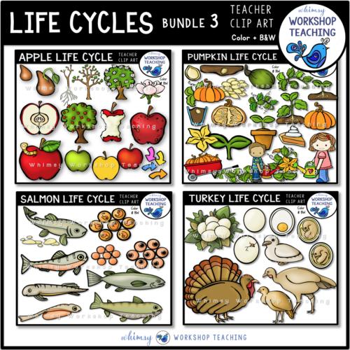 Life Cycles Clip Art Bundle 3