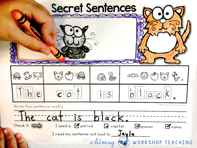 secret sentences in action