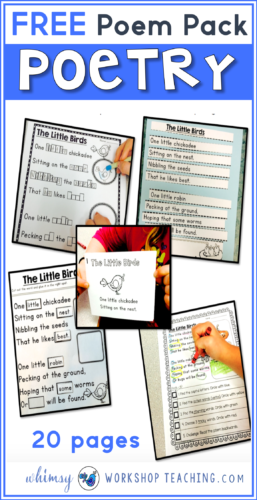 This a one of the poem of the week packs that I use in my classroom to practice all kinds of literacy skills and spelling patterns!
