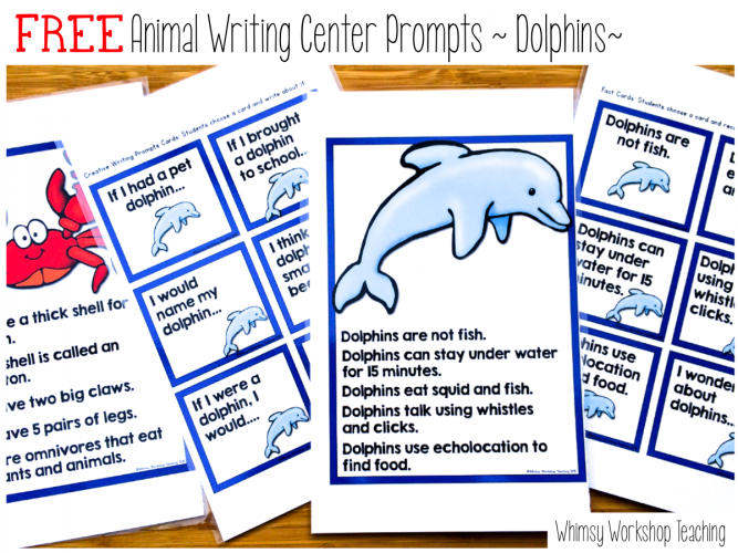 Dolphin Research and Writing Prompts