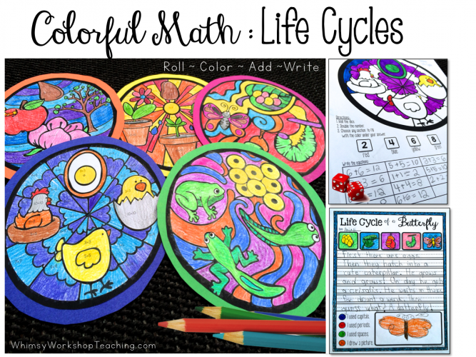 Colorful Math Life Cycles Collage
