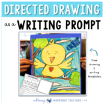 Directed drawing as a writing prompt