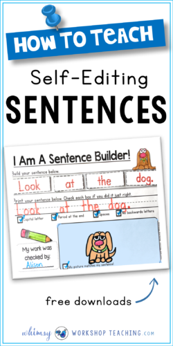 Sentence Building Kits practice basic sentences, sight words, blends, digraphs, and many more skills (free downloads)