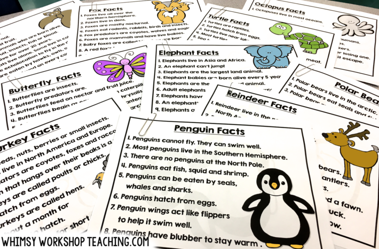 Animal Research Flap Books is a fun way to differentiate for emergent writers!