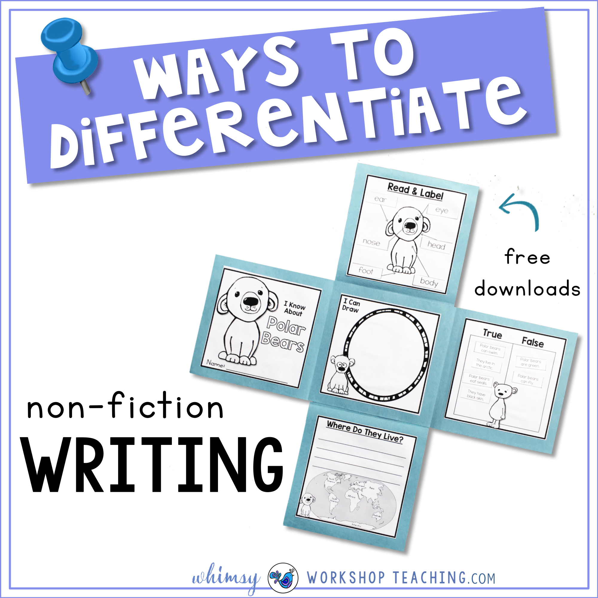 Ways To Differentiate non fiction writing