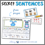 Secret Sentences are a fun way to learn sentence building and practice letter sound knowledge at the same time!