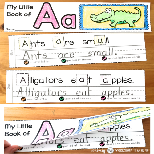 Alphabet booklets to teach phonics and sentence building