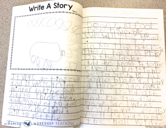 Examples of student writing