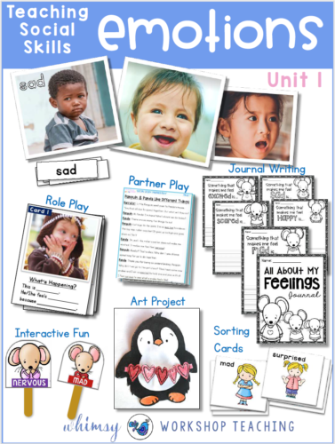 Teaching social skills and character development preview pictures