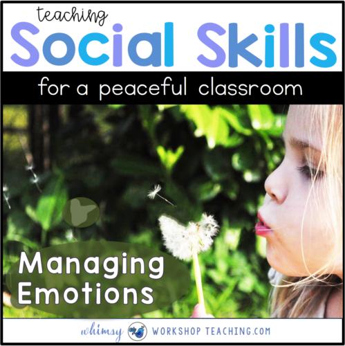 Teaching Social Skills: Calm Down Strategies