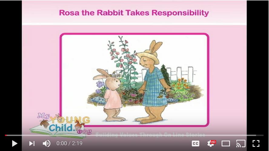 Rosa Responsible Story