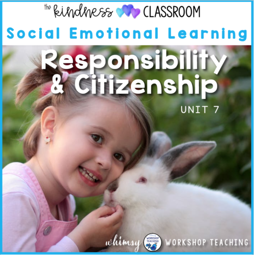 responsibility lessons