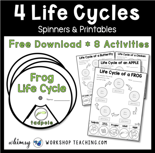free downloads to review 4 life cycles.