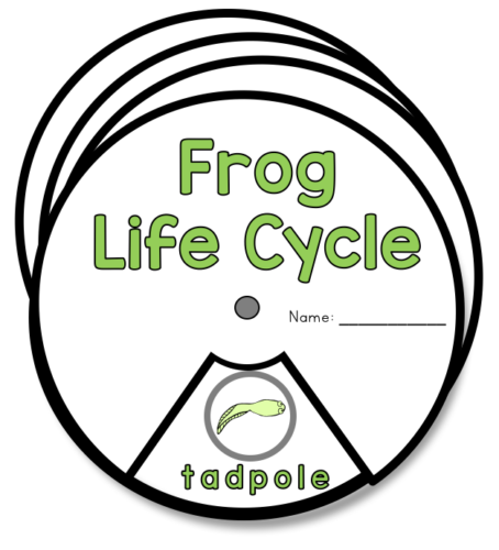 life cycle spinners free downloads