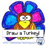 Directed Drawing Videos: Turkey